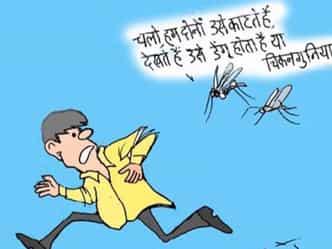 VIDEO: कार्टूनिस्ट राजेन्द्र धोड़पकर की नजर में डेंगू और चिकनगुनिया