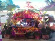 बड़गांव, सिलगार के फेणीनाग मंदिर में भागवत कथा शुरू