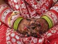 विवाह में आ रही हों अड़चने तो होली के दिन कर सकते हैं ये उपाय