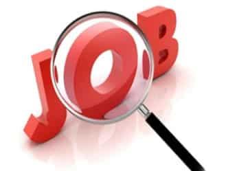 उत्तर प्रदेश लोक सेवा आयोग में होंगी 517 पदों पर भर्तियां