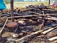 रीगा व सुरसंड में सात घर जलकर राख