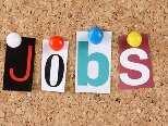 इलाहाबाद यूनिवर्सिटी में 303 पदों पर नौकरियां