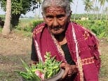 यूट्यूब पर छाई 106 साल की 'नानी', इनके खाने के हैं कई दीवाने