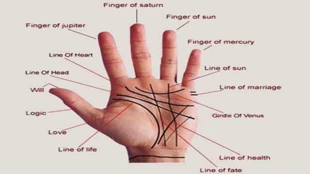 learn what you would say the ridges of your hand - जानिए