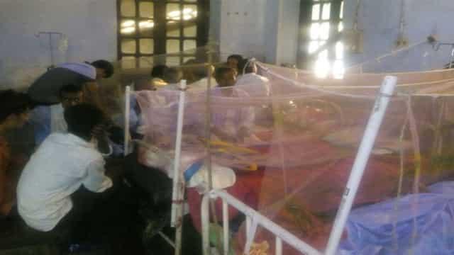शहर के मरीज के अलावा पिंडारुच की शिक्षिका डेंगू की चपेट में