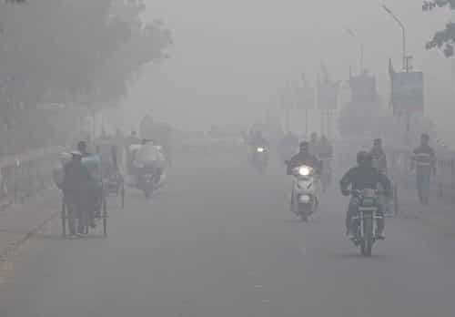 मुजफ्फरनगर में घने कोहरे और सर्द हवा से आफत